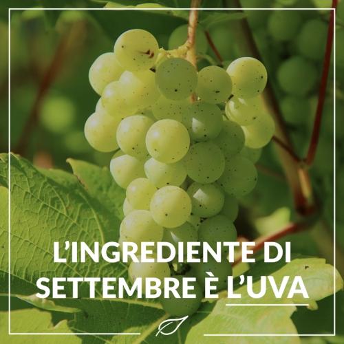 L'ingrediente di Settembre è l'uva